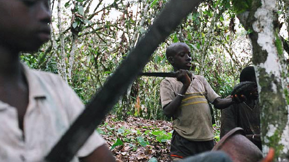 RESOURCES_FEATURE_THE_ISSUE_COCOA_AND_CHILD_LABOUR